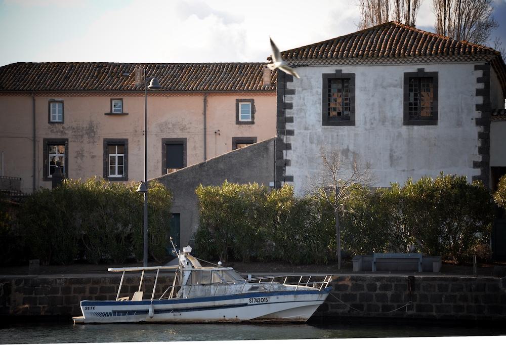 Bateau et mouette sur l'Hérault à Agde
