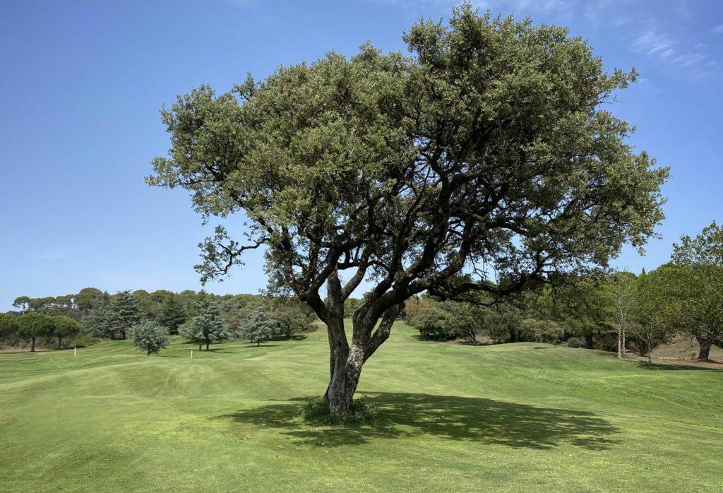 La Soulayla offre golf Cap d'Agde Azur_3114